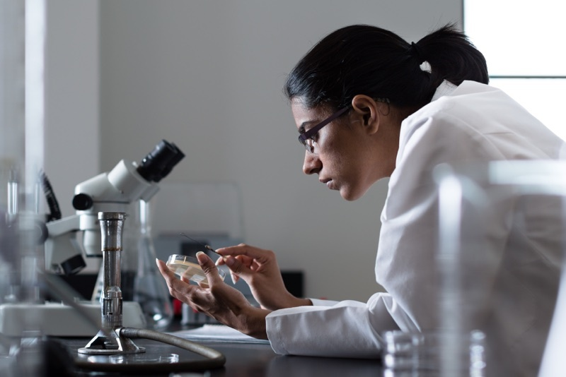 Female student in a lab coat, leans over a microscope in a Rollins science lab.