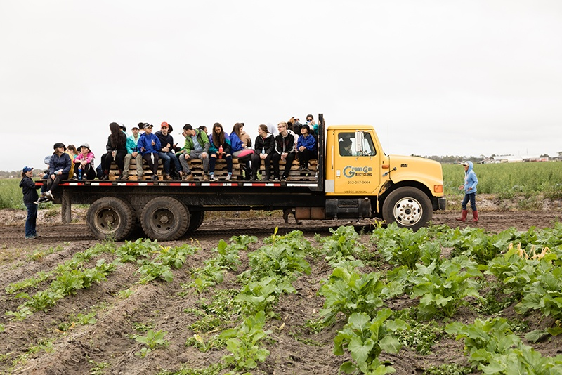 Students on the back of a flat-bed truck in a vegetable farm.