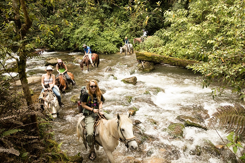 Six students cross a stream in Costa Rica on horseback.